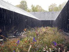serpentine gallery pavillon, london | architecture by peter zumthor, garden design by piet oudolf