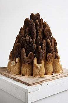 Hilary Berseth. Programmed Hive #6, sculpture made in collaboration with bees.