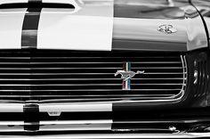 1966 Shelby GT350 Grille Emblem Photograph