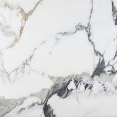 Paonazetto - Polished - Marble_Web