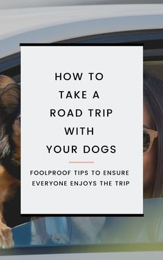 Discover our 16 top tips for traveling with dogs and learn how to take a road trip with your dogs in tow and ensure everyone has a great time. These travel tips help you take your dog on vacation with you and allows you to keep the dogs safe, healthy, and protected from potential dangers. Via @honeyandpineco #traveldogs #travelwithdogs #roadtrip #roadtriptravel #traveltips #traveladvice Road Trip Hacks, Road Trip Essentials, Road Trips, Dog Daycare Near Me, Road Trip With Dog, Dog Vaccinations, Chihuahua Dogs, Chihuahuas, Dog Car