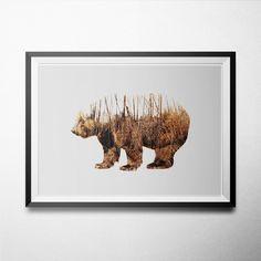 Double Exposure Animal-Bear