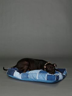 Sookie's Bed in Master Bedroom so she doesn't feel neglected when she can't snuggle on the bed ~ Patched Denim Dog Bed from FreePeople - Another use for used jeans :) Pet Beds, Dog Bed, Denim Crafts, Jean Crafts, Upcycled Crafts, Repurposed, Denim Ideas, Animal Projects, Animal Crafts
