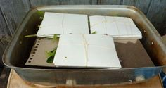 Tutorials   Threadborne printing with plants