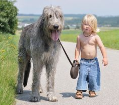 Achild's best friend: 25wonderful children and their loving dogs