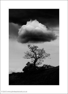 lone tree and cloud-s by leeechy (jkjond), via Flickr