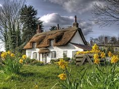 Rustic thatched farmhouse cottage