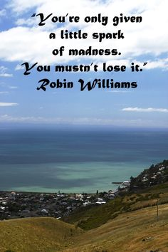 """""""You're only given a little spark of madness. You mustn't lose it.""""  Robin Williams  -- On image of CHRISTCHURCH, NEW ZEALAND, taken by Dr. J.T. McGinn -- Explore top quotes on inspiring creativity at slideshow and article: http://www.examiner.com/article/best-inspiring-quotes-on-creativity"""