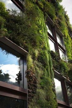 ↠ #Arquitectura VERDE ↞ Así es posible llenar las ciudades de naturaleza y oxígeno puro #diseñourbano #paisajismo #FridayFinds