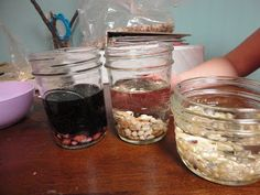 Discovery Days and Montessori Moments: Botany~ Seed Week