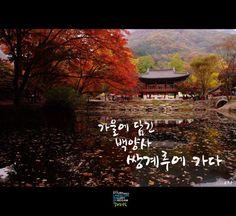 beautiful korea  Bekyangsa  the name of temple in korea  www.youism.co.kr