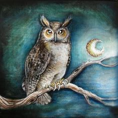 Magical moon owl bird with a cresent moon sitting on a branch at midnight. By Patrizia Ambrosini Cool Paintings, Animal Paintings, Original Paintings, Original Art, Sofa Throw Pillows, Throw Pillow Cases, Throw Blankets, Pillow Covers, Art Vert