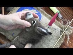 How to Needle Felt a Donkey: Part 1 Armature and Wrapping - YouTube