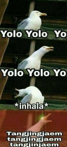 Yolo yolo yolo yo.. Where's my money yeah.. Tangjinjaem tangjinjaem tangjinjaem! #gogo #bts