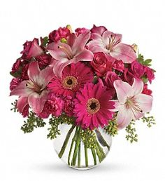 Send anniversary flowers from a real Southampton, NY local florist. Dutch Petals Inc has a large selection of gorgeous floral arrangements and bouquets. We offer same-day flower deliveries for anniversary flowers. Ikebana, Summer Flowers, Fresh Flowers, Cheap Flowers, Bright Flowers, Flowers Garden, Orange Flowers, Bright Pink, White Flowers