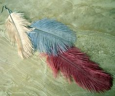 Ostrich Feather Earring  Antiqued Rose Silver by peacefrogdesigns, $25.00