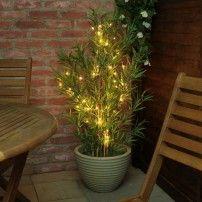 Outdoor Battery Fairy Lights, Weatherproof, 50 Warm White on tree