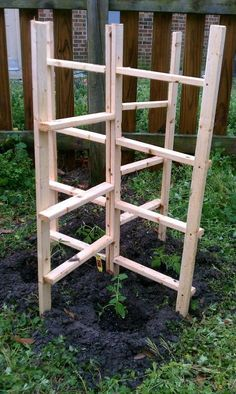 sturdy and free-standing trellis/plant support (Diy Garden Trellis) Tomato Garden, Garden Trellis, Edible Garden, Vegetable Garden, Garden Tomatoes, Rose Trellis, Tomato Plants, Bamboo Trellis, Diy Trellis