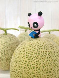 Reading on melon Pastel Grunge, Kawaii Cute, Breathe, Panda, Foods, Snacks, Live, Reading, Friends
