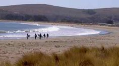 Bodega Bay California, my favorite place in the world!