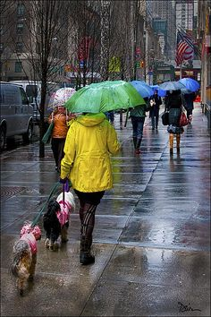 Rainy Day in Manhattan by Peggy Dietz http://www.pinterest.com/inesgvr/umbrellas/