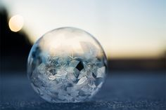 Frozen Bubbles: Incredible Photos by Angela Kelly