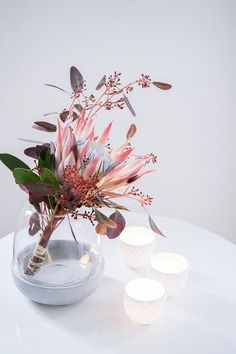 Eucalyptus & Protea love in the new BoConcept Vas . - 13 Likes – Discover the picture from dreieckchen.de on COUCHstyle on & & Protea lo - Table Flower Arrangements, Table Flowers, Protea Flower, Flower Vases, Protea Bouquet, Diy Wedding Flowers, Bridal Flowers, Bouquet Wedding, Bridal Bouquets