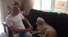 This dog who thinks his reflexes are spot on.
