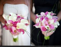 Pink and white calla lillies