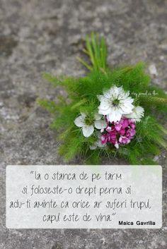qoute about head blame body suffering Gavrilia Flower Qoutes, Photo Illustration, Beautiful Words, Wedding Flowers, Flora, Bouquet, Blame, Friday, Inspirational