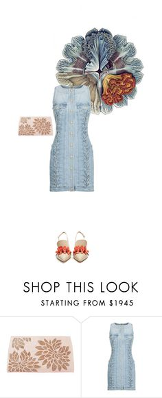 """""""Untitled #867"""" by krahmmm ❤ liked on Polyvore featuring Nancy Gonzalez, Balmain and Anya Hindmarch"""