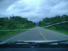 de la selva sus paisajes (San Martín)