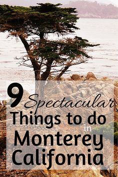 Explore the beauty of Monterey, California