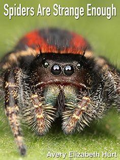 Spiders Are Strange Enough by Avery Elizabeth Hurt https://www.amazon.com/dp/B00SG1JEY8/ref=cm_sw_r_pi_dp_x_.C4BzbPY9DYW7