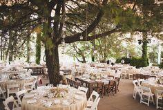 Cape Town Wedding Venue Forest Inspiration