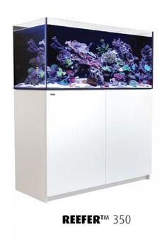 Red Sea REEFER Aquarium 350 (120 cm Länge / 275 Liter) - das tolle Daheim für Ihre Fische! #aquarium #meerwasserhardware