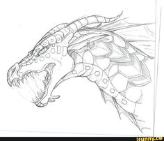 Wings Of Fire Coloring Pages. Wings Of Fire Coloring Pages Seawing Sketch By Thelittlewaterdragon Washing Machine Smells Portable Washer And Dryer Whirlpool Direct Drive Repair Kenmore Drain Pump Motor Maytag Sink Animal Sketches, Art Drawings Sketches, Animal Drawings, Cool Drawings, Cool Dragon Drawings, Dragon Head Drawing, Wings Of Fire Dragons, Dragon Sketch, Dragon Artwork