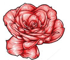 Lovely Rose Colored by ~Almigh-T on deviantART
