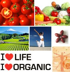 Organic Food Uses & Benefits, Weight loss & Healthy Body Food List - Organic Health Planet    http://organichealthplanet.com/
