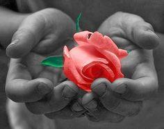 """Ho visto """"tasche vuote"""" donare sorrisi sinceri nel cuore di chi aveva tutto. Ho visto """"tasche piene"""" che puzzano di fottuto egoismo. Ecco, la seconda categoria è la vera povertà.  (Luna Del Grande)"""