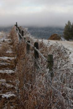 elorablue:    Winter in Norway by A Lindberg on Flickr.