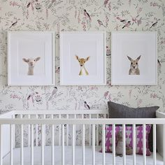 Sweet little animal faces from The Animal Print Shop! I like the Tyler Hall wallpaper, too! House of Turquoise: Sharon Montrose Nursery Room, Girl Nursery, Nursery Decor, Lamb Nursery, Nursery Ideas, Bedroom Ideas, Nursery Wallpaper, Bird Wallpaper, Beautiful Wallpaper