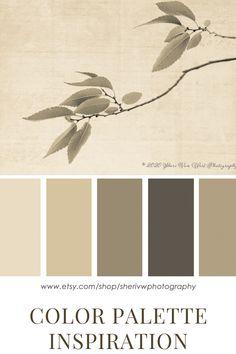 Warm Bedroom Colors, Neutral Wall Colors, Bedroom Paint Colors, Paint Colors For Living Room, Paint Colors For Home, Earth Colour Palette, Neutral Colour Palette, Color Palettes, Palette Wall