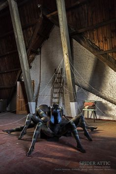 Spider Attic