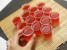 How to Make Sex on the Beach Jello Shots. Jello shots are a fun addition to any party, since they are both portable and delicious. Sex on the Beach Jello Shots taste sweet and summery, and will remind your guests of sipping drinks on the. Gelatin Recipes, Jello Shot Recipes, Alcohol Recipes, Drink Recipes, Bartender Recipes, Jello Gelatin, Hey Bartender, Martini Recipes, Pudding Recipes