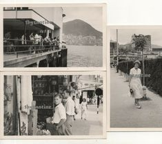 Hong Kong Sai Wan Chinese shop st scenes 1960 Vintage old Photographs China China Hong Kong, The Row, Photographs, Asia, Chinese, Shopping, Vintage, Plant Bed, Photos