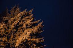 Deep Blue | Color. Noche. Océano. Pedraza