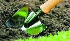 Qué hacer en el jardín durante el mes de Mayo en www.tuinen.es