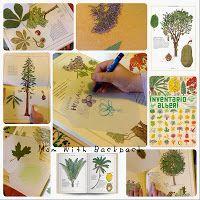 Make a Herbarium