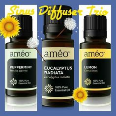 Have allergies?  Have a diffuser?  Try diffusing these Améo oils for sinus relief. Purchase at www.debbiezachariah.myameo.com